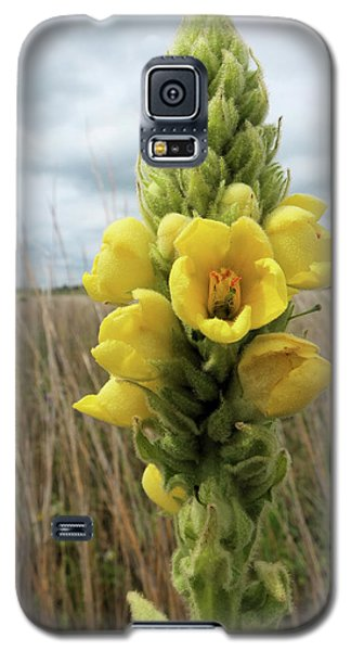 Galaxy S5 Case featuring the photograph Cowboy Toilet Paper by Scott Kingery