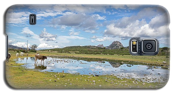 Reflected Cows  Galaxy S5 Case