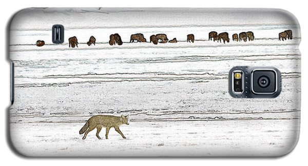 Coyote And Bison Galaxy S5 Case