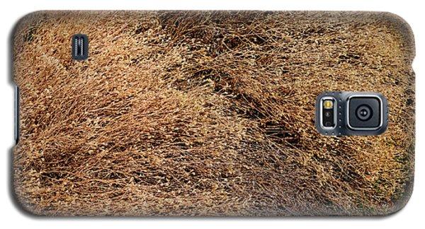 Coyote Brush Galaxy S5 Case