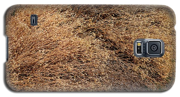 Coyote Brush Galaxy S5 Case
