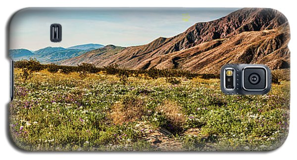 Coyote Canyon Meadow View Galaxy S5 Case