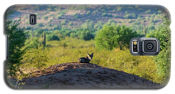 Coyote Hill Galaxy S5 Case