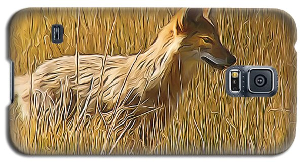 Coyote Sunshine Galaxy S5 Case