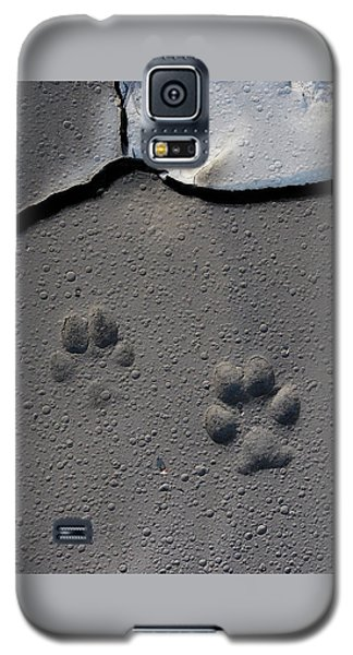 Coyote Tracks Galaxy S5 Case