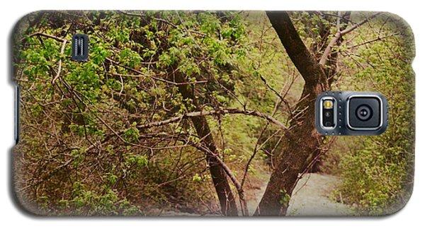 Cozy Stream In American Fork Canyon Utah Galaxy S5 Case