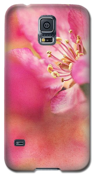 Crab Apple Blossoms II Galaxy S5 Case