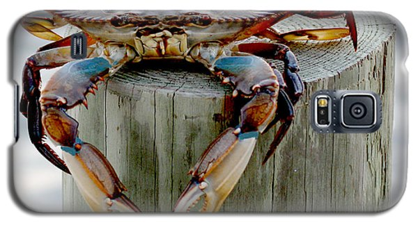 Crab Hanging Out Galaxy S5 Case