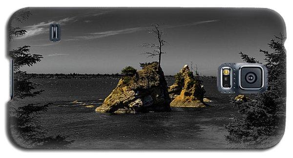 Crab Rock Galaxy S5 Case