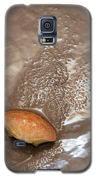 Crab Shell On Beach Galaxy S5 Case