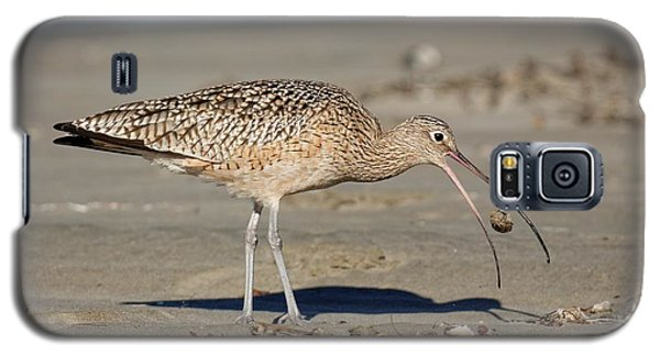 Crab Toss - Curlew Galaxy S5 Case