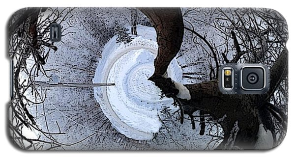 Crabapple Tree Galaxy S5 Case by Ron Bissett