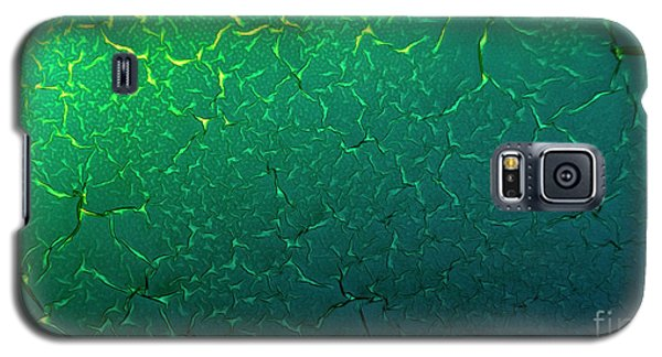 Cracks Under Microscope Galaxy S5 Case