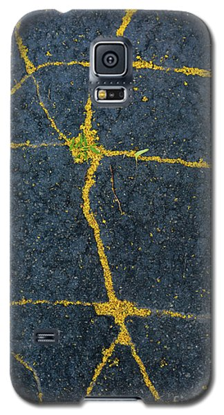 Cracked #1 Galaxy S5 Case