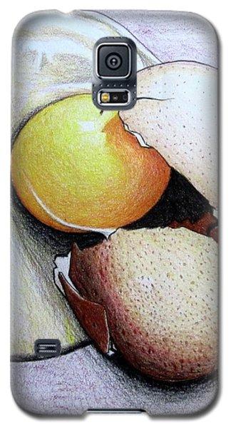 Cracked Egg Galaxy S5 Case
