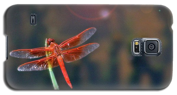Crackerjack Dragonfly Galaxy S5 Case