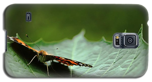 Galaxy S5 Case featuring the photograph Cradled Painted Lady by Debbie Oppermann