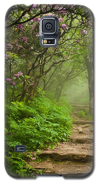 Craggy Steps Galaxy S5 Case