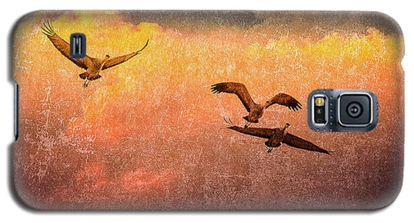 Galaxy S5 Case featuring the photograph Cranes Lifting Into The Sky by Jeffrey Jensen