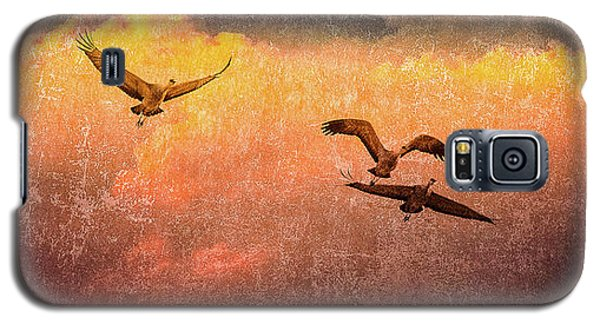 Cranes Lifting Into The Sky Galaxy S5 Case