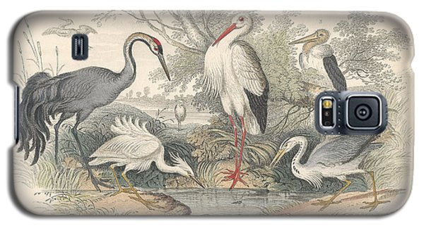 Cranes Galaxy S5 Case by Anton Oreshkin
