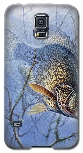 Crappie Cover Tangle Galaxy S5 Case