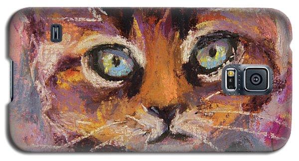 Crazy Cat Tabby  Galaxy S5 Case