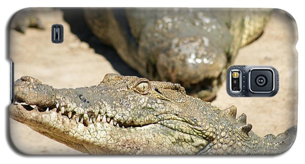 Galaxy S5 Case featuring the photograph Crazy Saltwater Crocodile by Gary Crockett