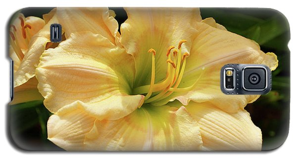 Galaxy S5 Case featuring the photograph Cream Daylily by Sandy Keeton