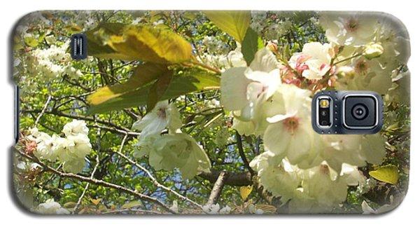 Cream Tree Galaxy S5 Case by Judith Desrosiers