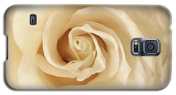 Creamy Rose Galaxy S5 Case