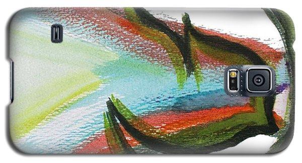 Creation Pey Galaxy S5 Case