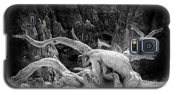Creatures Of Bryce Canyon Galaxy S5 Case