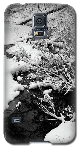 Creek Cloaked In Winter Galaxy S5 Case by Scott Kingery