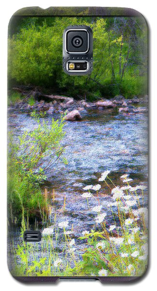 Galaxy S5 Case featuring the photograph Creek Daisys by Susan Kinney