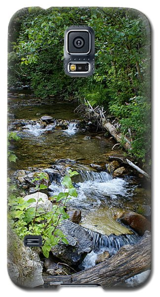 Galaxy S5 Case featuring the photograph Creek On Mt. Spokane 1 by Ben Upham III