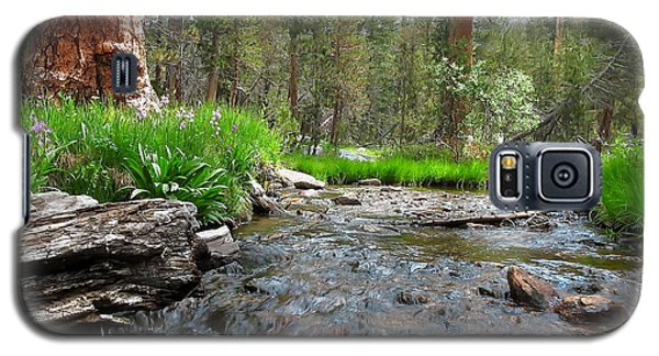 Galaxy S5 Case featuring the photograph Creekside by Paul Foutz