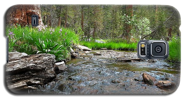 Creekside Galaxy S5 Case by Paul Foutz