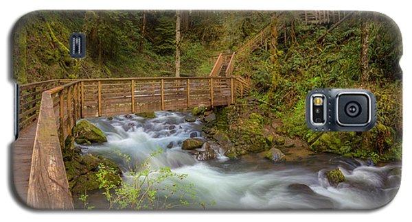 Creekside Walk Galaxy S5 Case