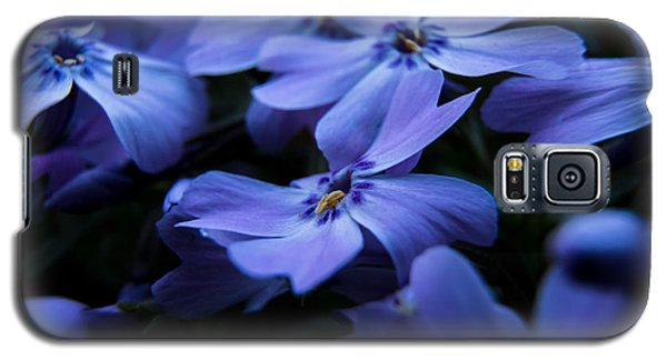 Creeping Phlox Galaxy S5 Case by Jay Stockhaus