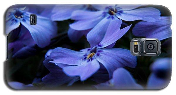 Creeping Phlox Galaxy S5 Case