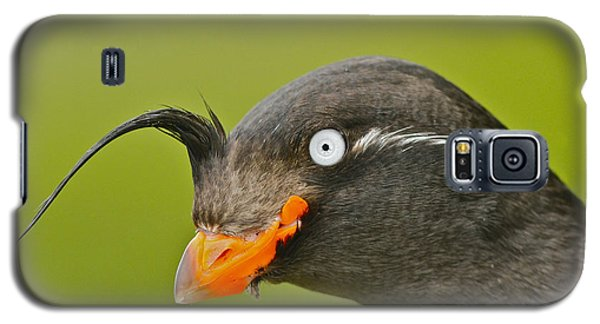 Crested Auklet Galaxy S5 Case by Desmond Dugan/FLPA