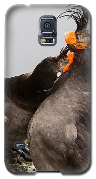 Crested Auklets Galaxy S5 Case by Sunil Gopalan