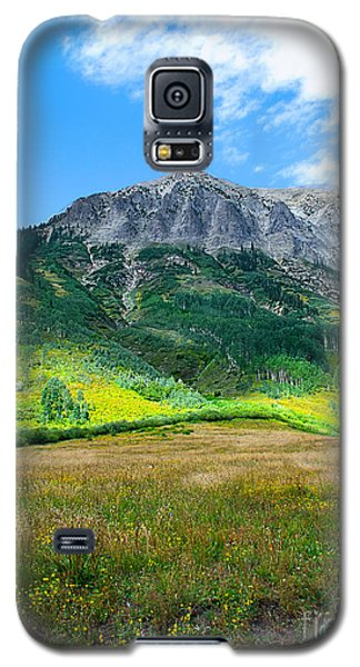 Crested Butte Aspens Galaxy S5 Case