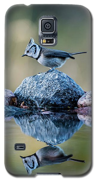 Crested Tit's Reflection Galaxy S5 Case