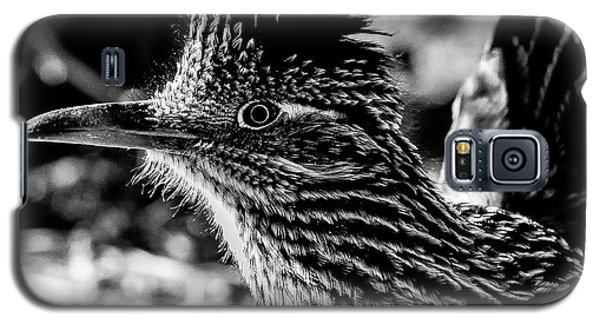 Cresting Roadrunner, Black And White Galaxy S5 Case