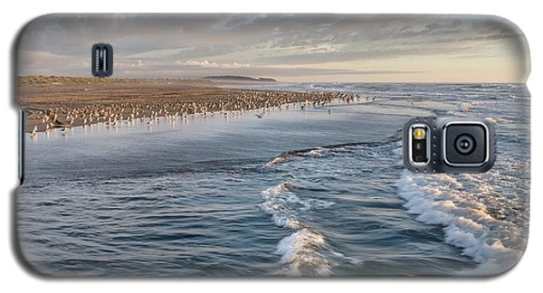 Galaxy S5 Case featuring the photograph Crests And Birds by Greg Nyquist