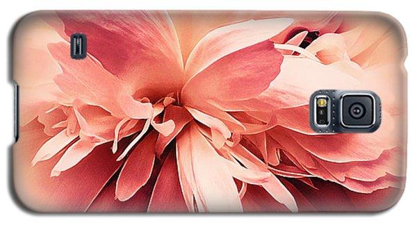 Galaxy S5 Case featuring the photograph Crimson Ballet Powder Puff by Darlene Kwiatkowski