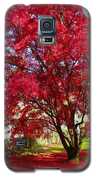 Crimson Radiance Galaxy S5 Case