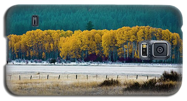 Crisp Aspen Morning Galaxy S5 Case